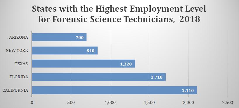Forensic Scientist Career In The U S